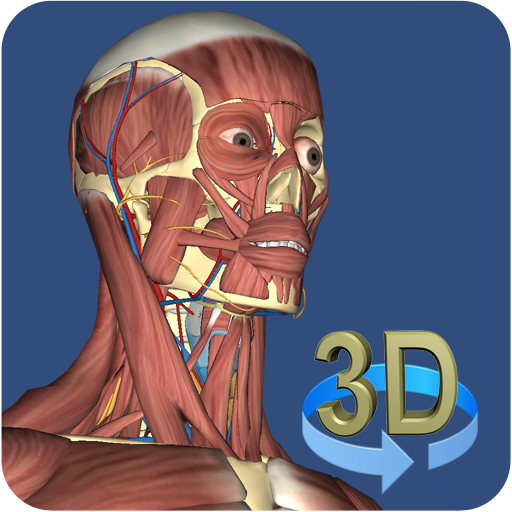 3D Anatomy LOGO-APP點子