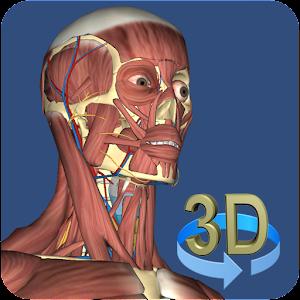 3D Anatomy Gratis
