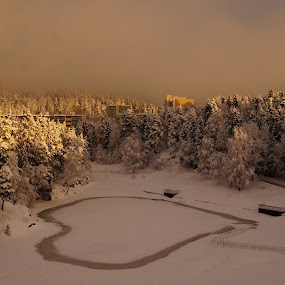 Heart by Jose Figueiredo - Landscapes Forests ( snow, forest, lake, norway,  )