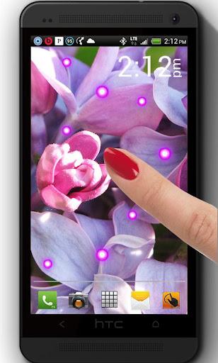 Bright Lilac live wallpaper