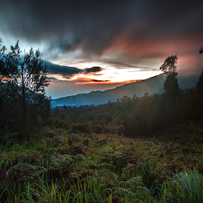 Mt. Bromo  by RIO DJOENED - Landscapes Mountains & Hills