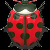 Bugs Race Free