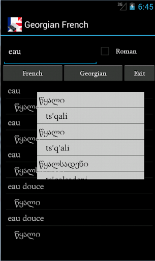 Georgian French Dictionary