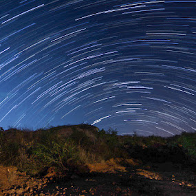 Wild Darkness by Adit Lal - Landscapes Starscapes ( bangalore, sky, stars, night, trails )