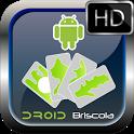 Briscola HD icon