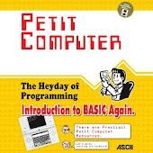 Petit Computer Strategy
