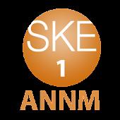 SKE48のオールナイトニッポンR 第1回