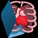 Nervoso e digestório-3D-Grátis icon