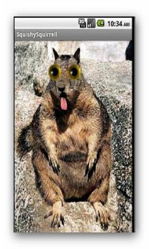 玩娛樂App|粘糊糊的松鼠免費|APP試玩