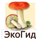 EcoGuide: Russian Fungi icon