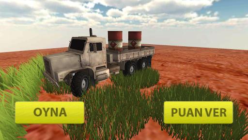 3D kamyon sürme yük taşıma