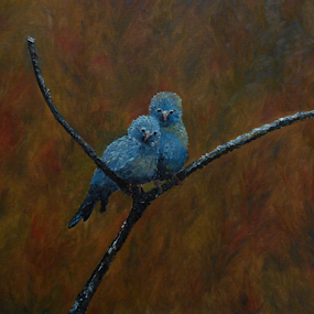 Talins Blue Canaries by Rhonda Lee - Painting All Painting ( bird, unique, nature, blue, art, rokinronda, branch, twig, paint, fun, canary, pretty, improving mood, moods, red, love, the mood factory, inspirational, passion, passionate, enthusiasm )