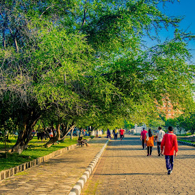 Walk in the afternoon by Erham Sepriansyah - City,  Street & Park  City Parks ( sky, tree, blue, afternoon, street, walk )