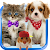 Talking cat. Talking puppy. file APK for Gaming PC/PS3/PS4 Smart TV