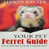Your Pet Ferret Guide
