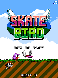 Flappy Skate Bird