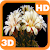 Blooming Flower Cactus Buds file APK Free for PC, smart TV Download