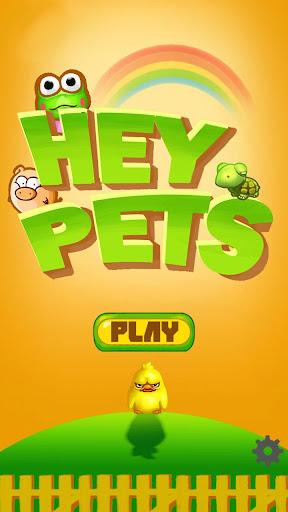 Hey Pet