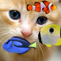 KITTY & FISH LIVE WALLPAPER(4) icon