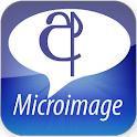 Sinhala SMS logo