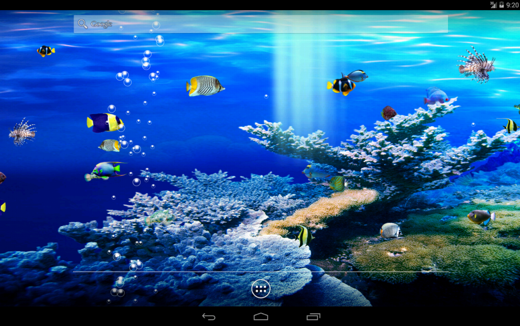 Aquarium Android Apps On Google Play