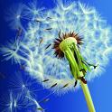 NEW Galaxy S3 Dandelion LWP icon