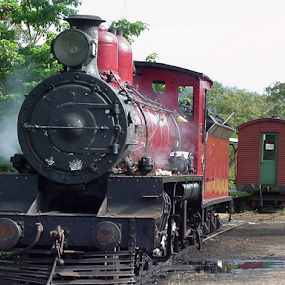 Ready to run by Peter Keast - Transportation Trains ( steam engine, old, transport, australia, train,  )