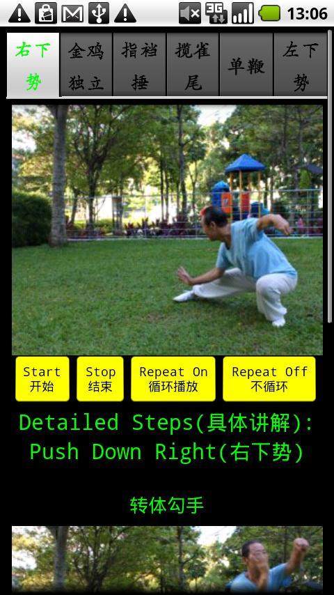 Yang TaiChi40-5- screenshot