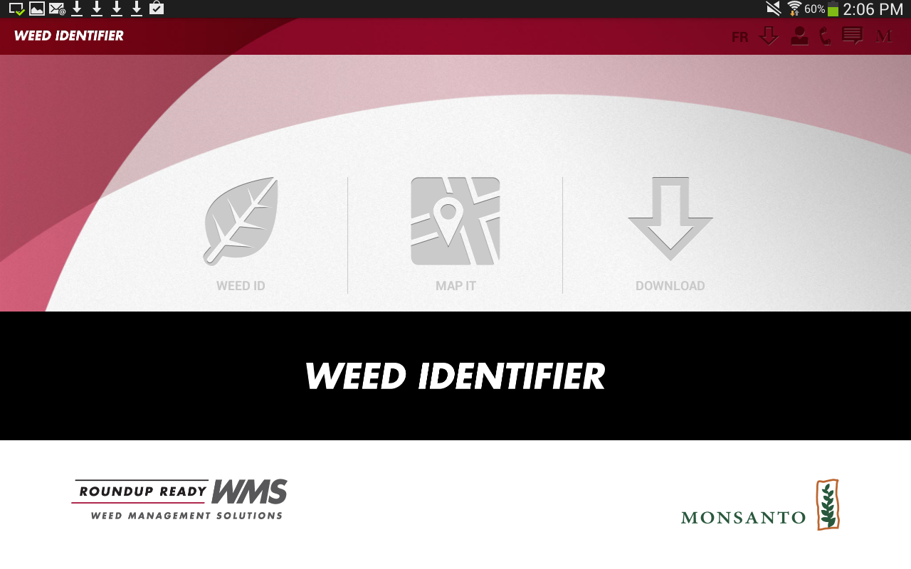 Weed ID- screenshot