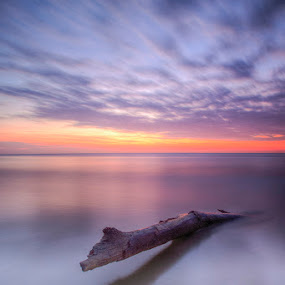 Alone by Pacu Jue - Landscapes Waterscapes