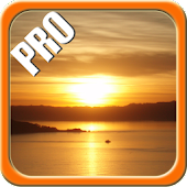 DayNight Multi LWP Pro