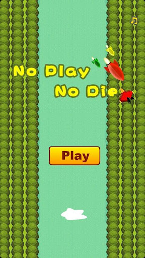 No Play Bird No Die
