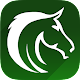 Free Horse Racing Picks & Tips Apk
