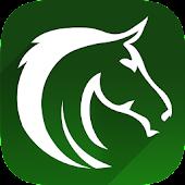 Horseplayer Toolkit (HPT)