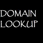 Domain Name Lookup