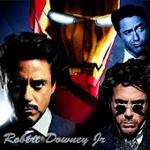 Robert Downey Jr WP HD 2013