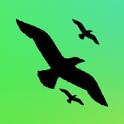 Birds Fx logo