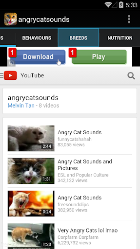 Angry Cat Sounds