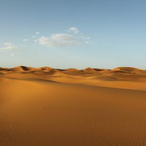 Desert near Erg Chebbi - Morocco by Ricky Papex - Landscapes Deserts ( clouds, canon, orange, dunes, erg chebbi, rissani, morocco, marrakech, italian photographer, marocco, brown, africa, 500d,  )