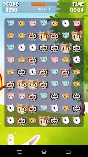 Lovely Kitty Crush :Game Match