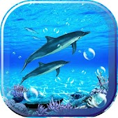 Dolphin Sounds Live Wallpaper