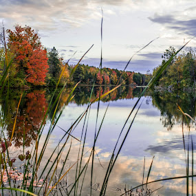 Thousand Islands NY Autumn Colors by Kimberly Arend Porter - Landscapes Sunsets & Sunrises ( thousandislandsny, new york, autumn colors, landscapes, beautifullandscape )
