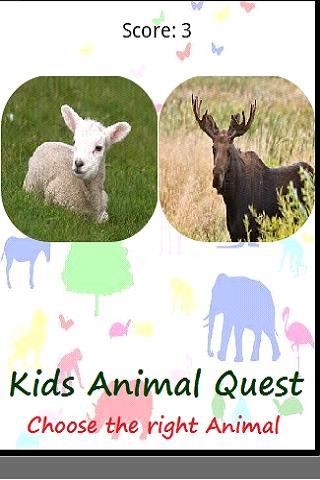 Kids Animal Quest Match Sounds - screenshot