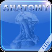 Human Anatomy I Lite