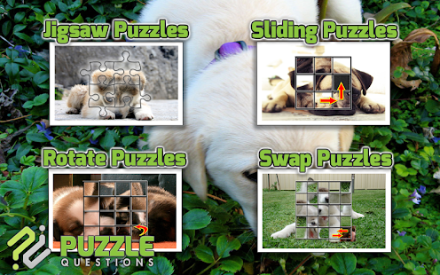 Free Cute Puppy Puzzle Games- screenshot thumbnail