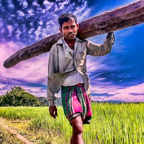 Hard Worker  by Qamrul Hassan Shajal - People Professional People ( field, hard worker, green field, blue sky, sky, wood, cloud, landscape, poor people, man )