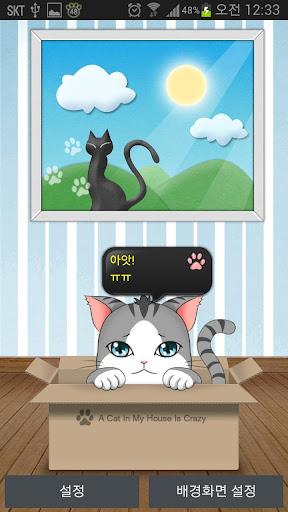 [FunnyCat] 검둥 고양이 라이브 배경
