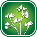 3050 C. California Wildflowers icon