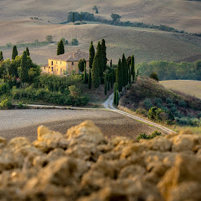 Sunrise in Tuscany by Jan Stupka - Landscapes Prairies, Meadows & Fields ( tuscany, sunrise, morning, summertime, landscape, italy, belveder, fields )