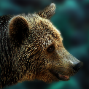 Bear Escape for PC and MAC